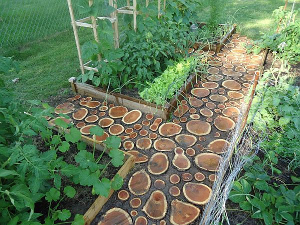 7 Creative ways of turning wood logs and tree stumps into unique ...
