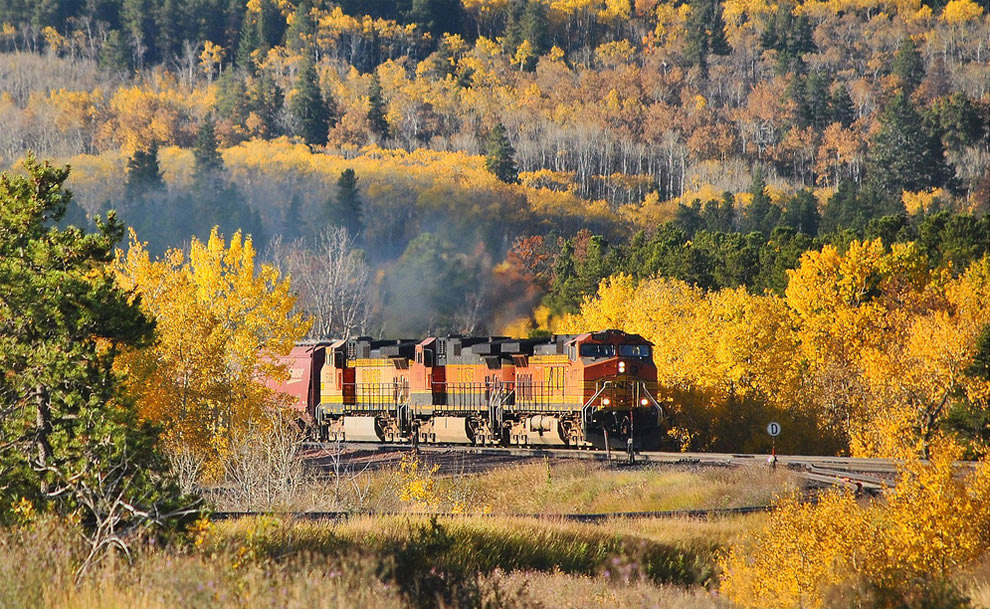 Autumn colors in Montana