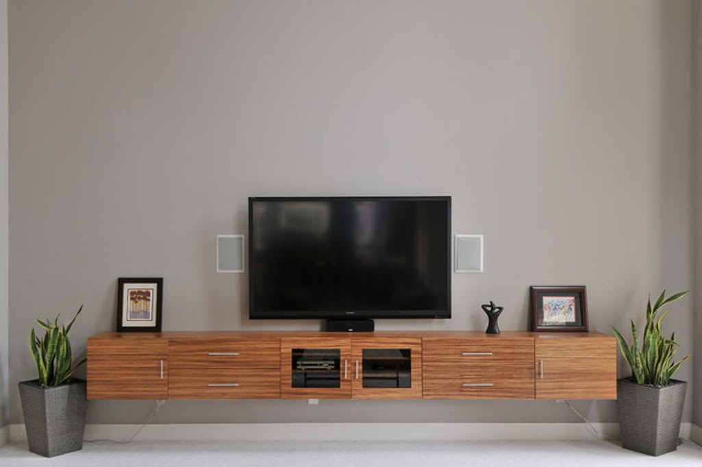 wood floating media console in rustic style with glass door cabinet and drawers two indoor concrete planter boxes with plant decoration large flat TV two picture frames