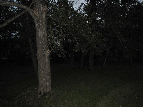 Park on a quiet evening
