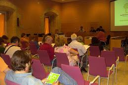 Plenari del CMST