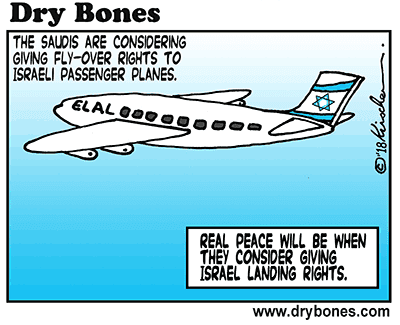 Dry Bones cartoon, Saudi Arabia, India, El Al, passenger flights, fly-over, air space, peace,