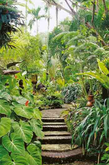 Backyard Landscape Ideas With A Pool