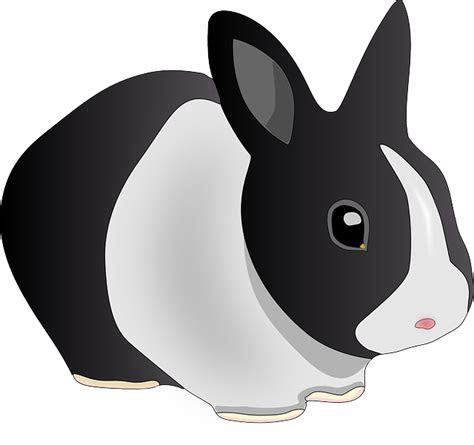 gambar vektor gratis kelinci hewan hitam  putih