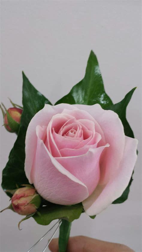 Buttonholes Flower Specialist Adelaide   Blackwood Florist
