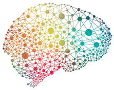 Image result for interconnected brain