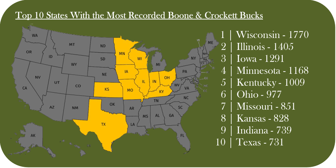 top 10 states with the most boone and crockett bucks all time. The biggest whitetail deer