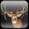 Deer Hunting Live Wallpaper ★ apk