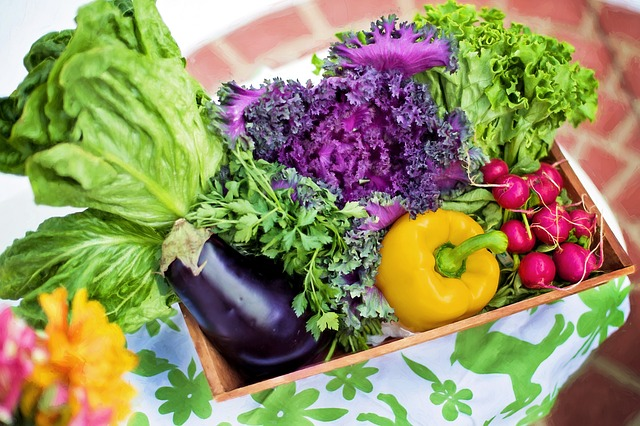 vegetables-790022_640.jpg