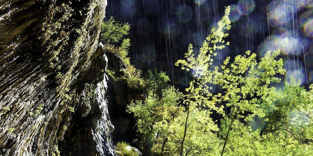 Sunshine Rain by Michael Titus