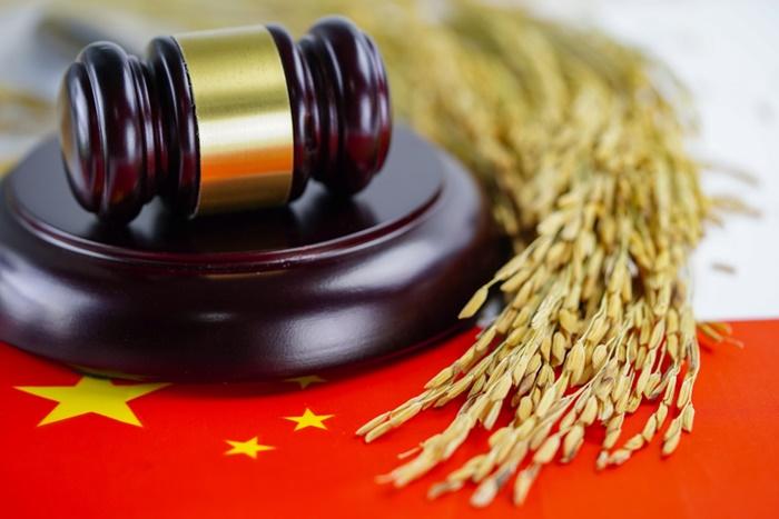 As novas estratégias adotadas pelo país asiático certamente impactarão o agronegócio brasileiro. (Fonte: Shutterstock)mercado chinês