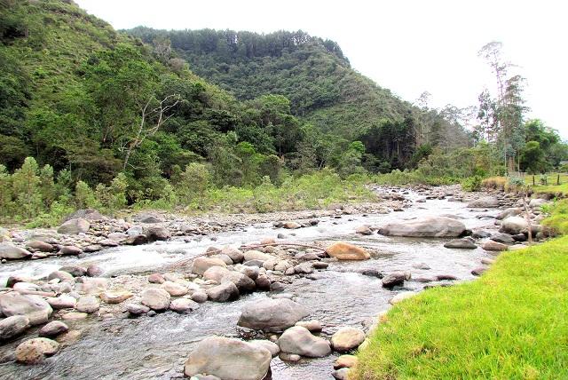 (VIVIANA) RIO QUINDIO 2.jpg