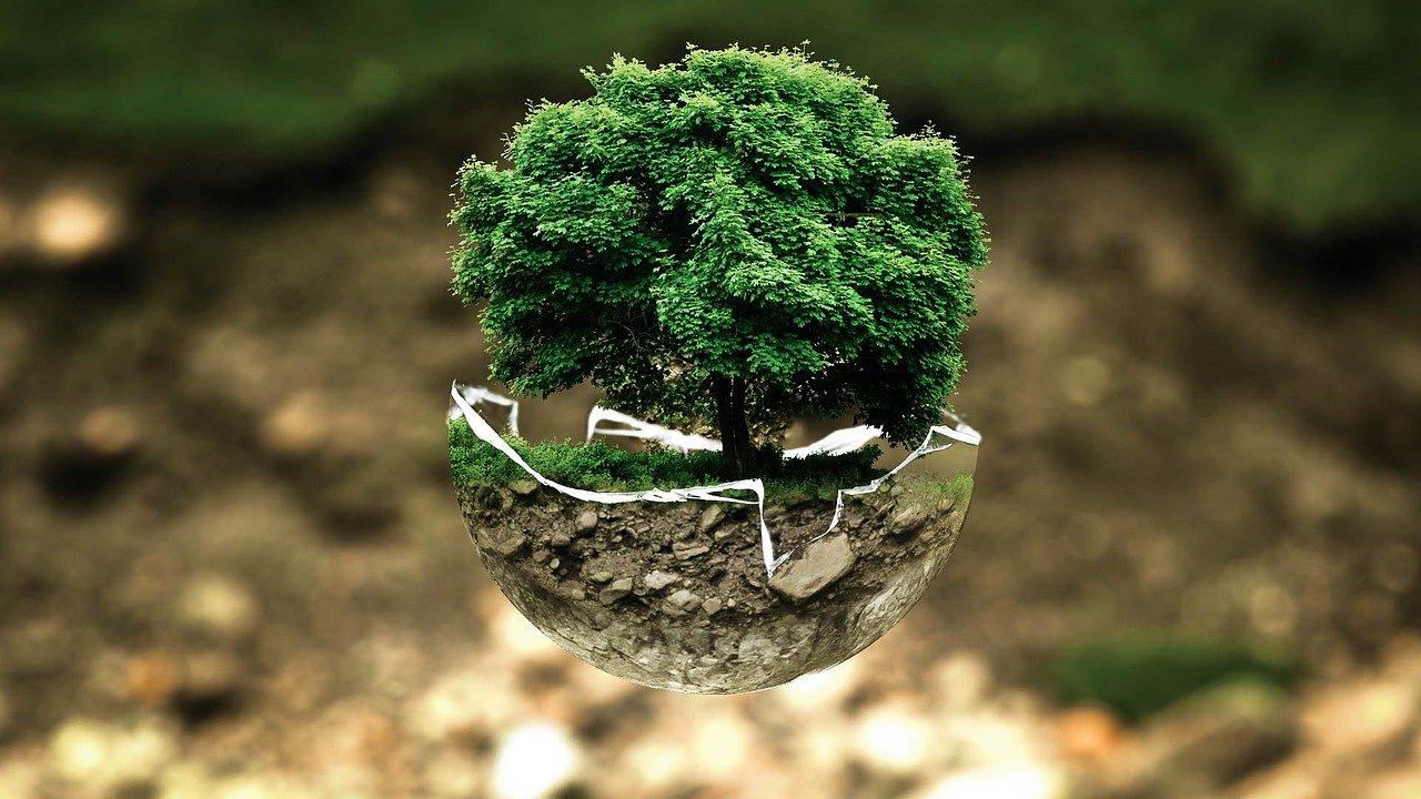 environmental-protection-environmental impact