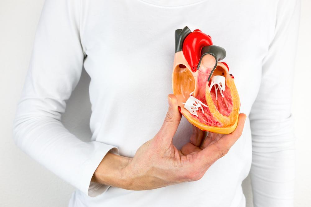 Homem segurando impressão 3D de coração