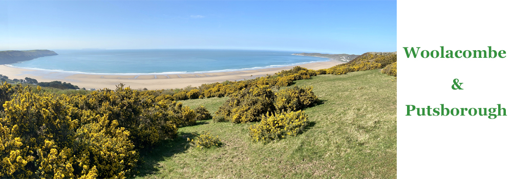 Woolacombe and Putsborough is a top beach for a family day out in Devon.