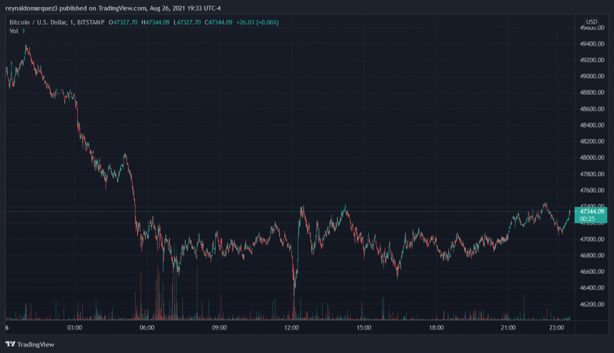 مؤشر سعر البيتكوين مع خسائر طفيفة على الرسم البياني.