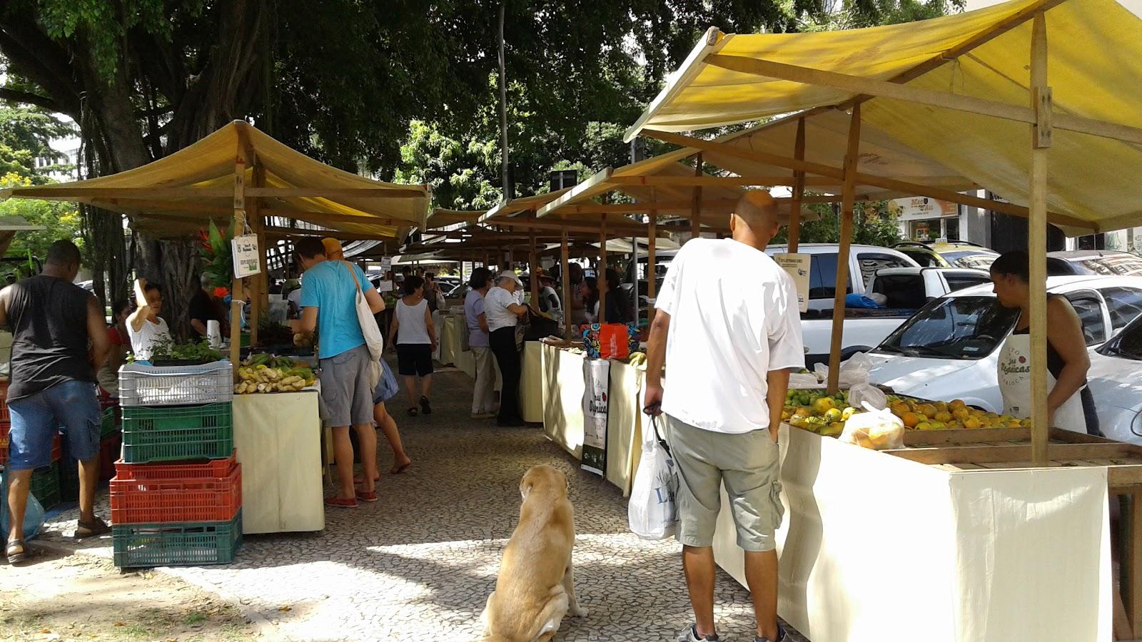 feira organica - ipanema-rj