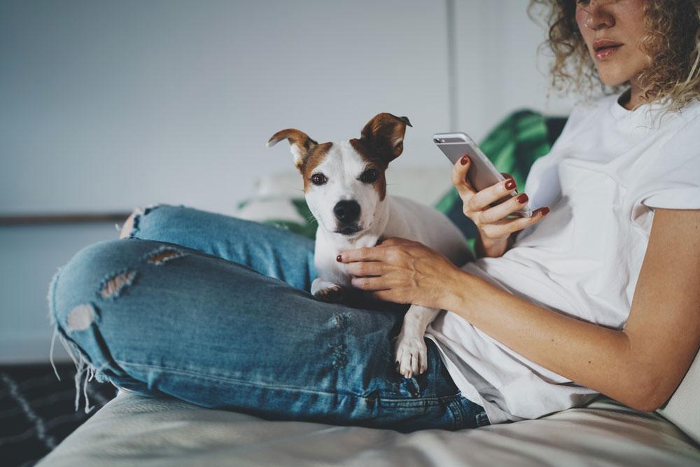 pet industry trends