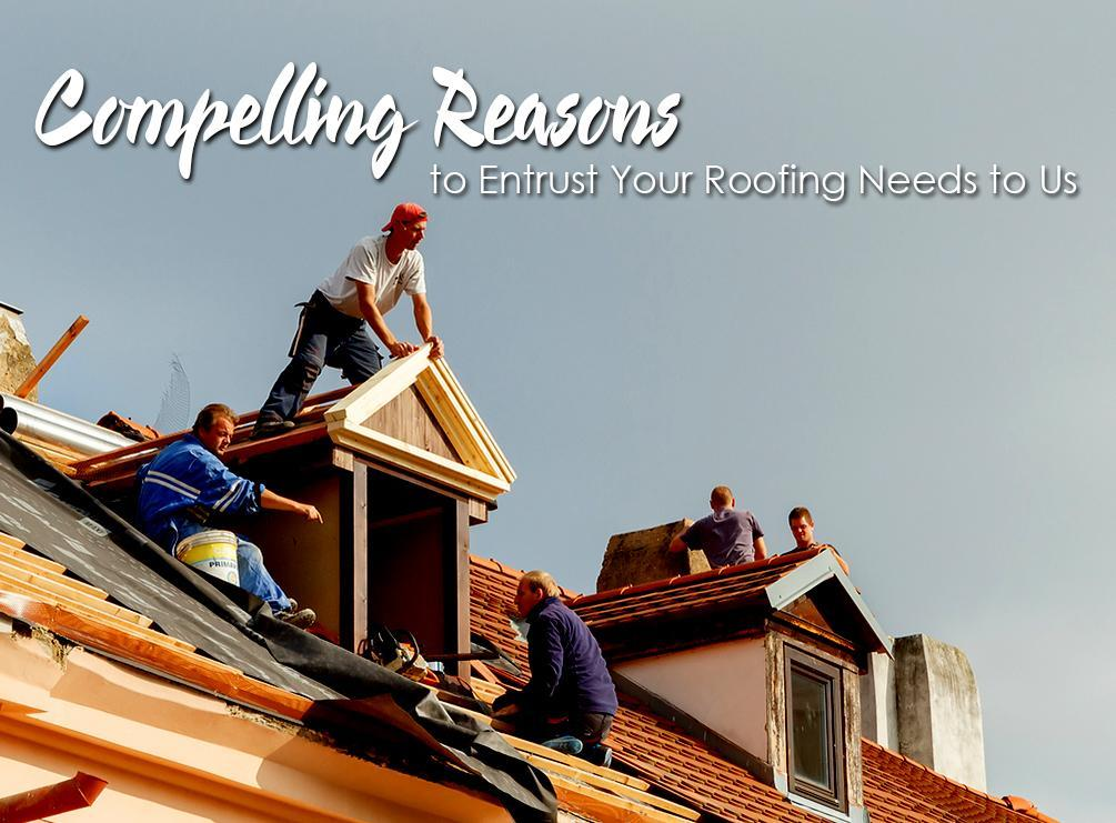Entrust Your Roofing Needs