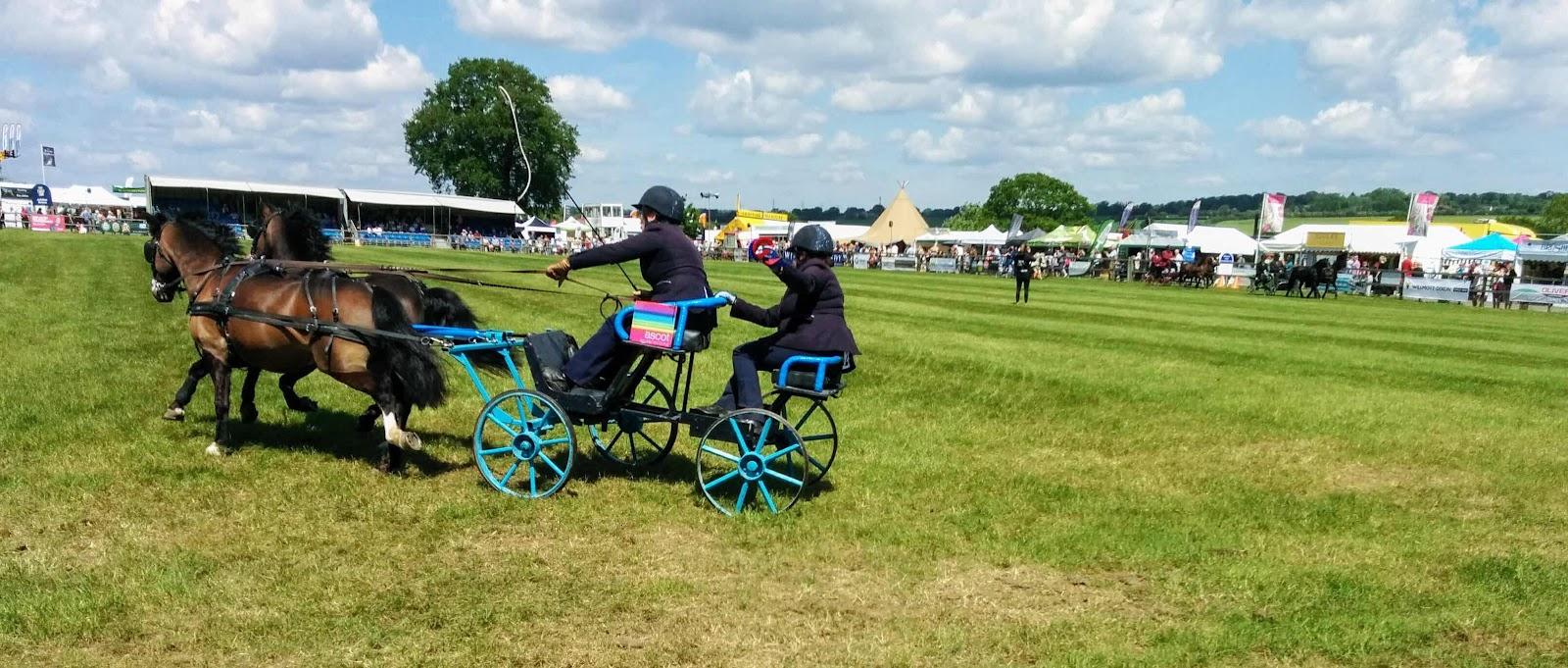 Pony cart at Hertfordshire county show