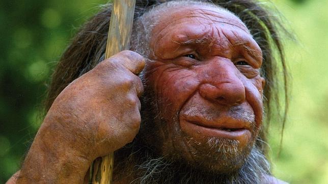 neandertal-museo-2--644x362.jpg