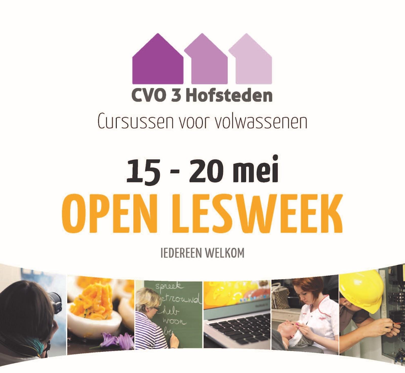 2017-03-20 Open Lesweek 2017 flyer geknipt.jpg