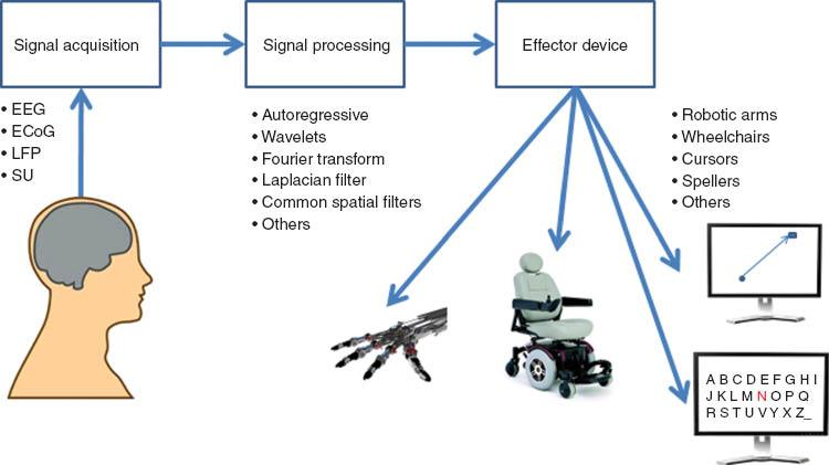 Brain-computer interface technologies: from signal to action in: Reviews in  the Neurosciences Volume 24 Issue 5 (2013)