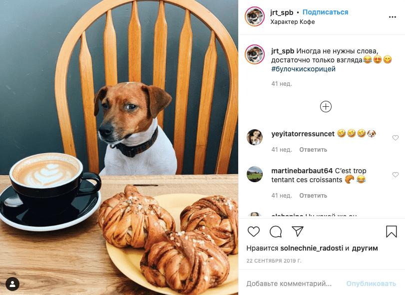 Дог-френдли кафе