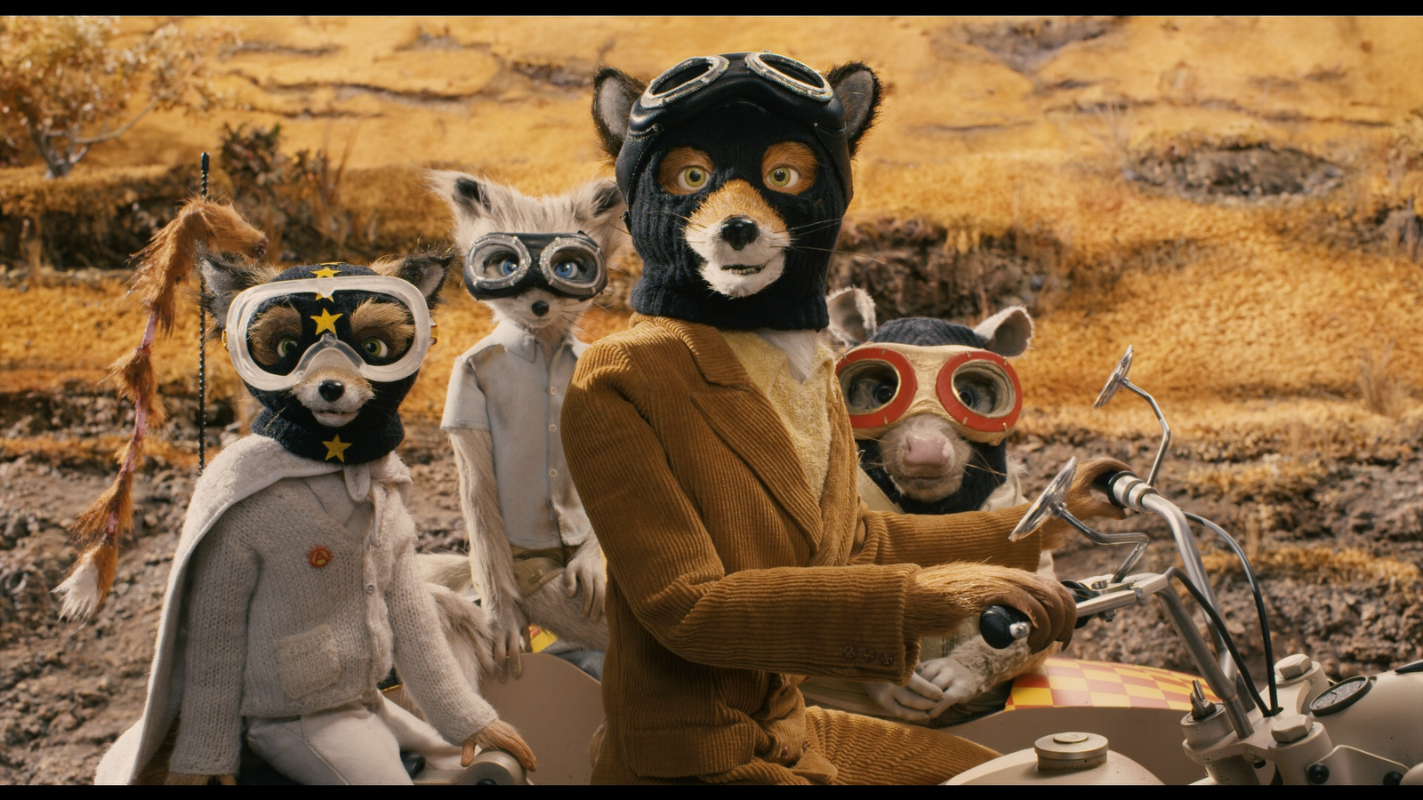 Fantastic Mr Fox. Mr Fox (centre) wears a brown cord backer and a balaclava, riding a motorcycle with two smaller foxes, Ash Fox and Kristofferson Silverfox, and Kylie the opossum riding in the sidecar with him. They are all wearing driving goggles and gazing at the camera.