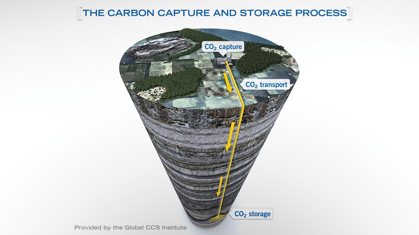 La rimozione della CO2 dall'atmosfera ci salverà dalla crisi climatica?