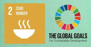 Image result for zero hunger