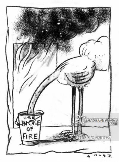 https://s3.amazonaws.com/lowres.cartoonstock.com/animals-ostrich-bird-fire_bucket-sand_bucket-head_in_the_sand-cgrn209_low.jpg