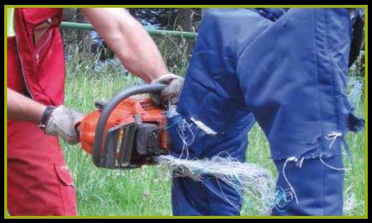 Gestione della sicurezza sul lavoro negli ambienti forestali