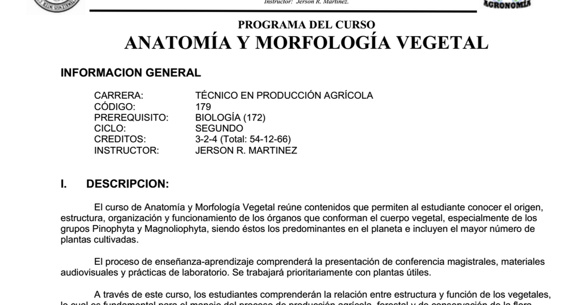 ANATOMÍA Y MORFOLOGIA VEGETAL.doc - Google Drive