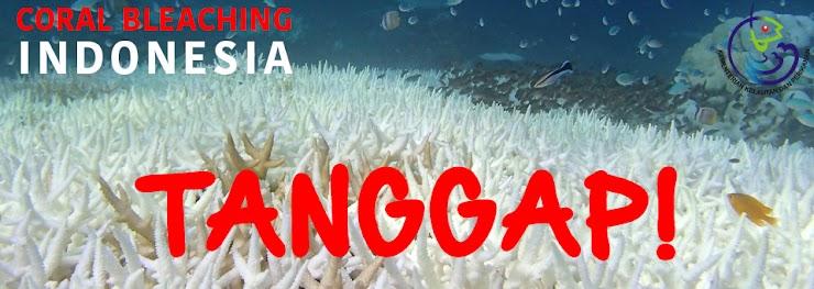 Indonesia Tanggap Coral Bleaching