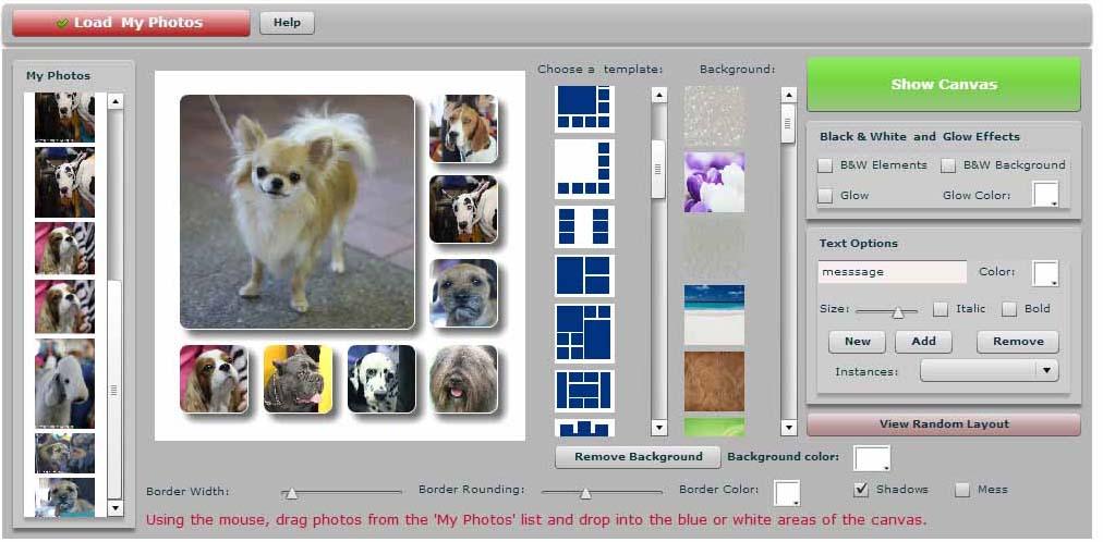 Apc collage 1.jpg