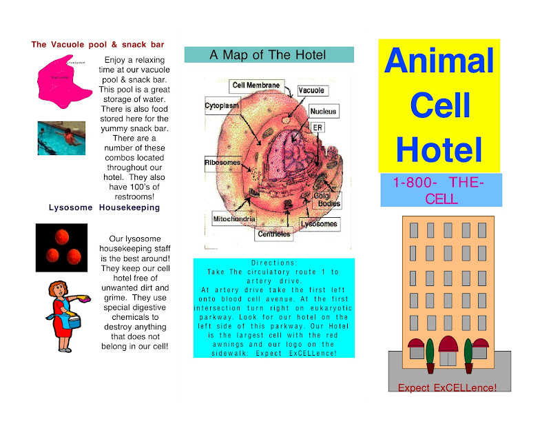 Travel To A Cell Project Doc