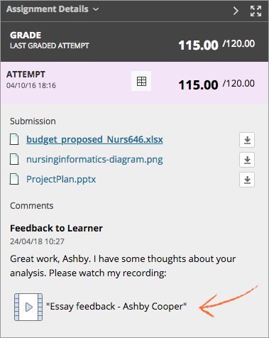 Image showing how feedback appears to student