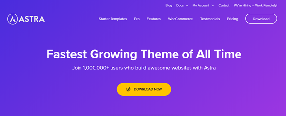 best woocommerce themes astra