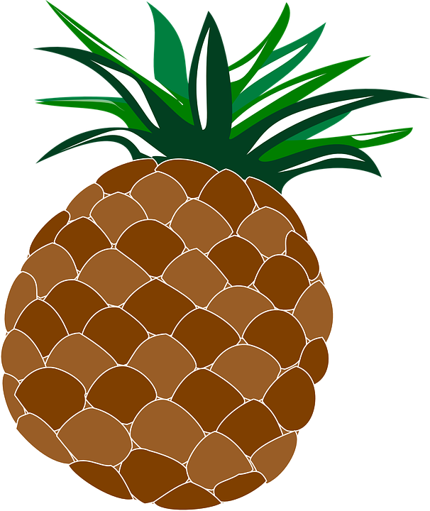 Free vector graphic: Pineapple, Food, Fruit, Hawaii - Free Image ...