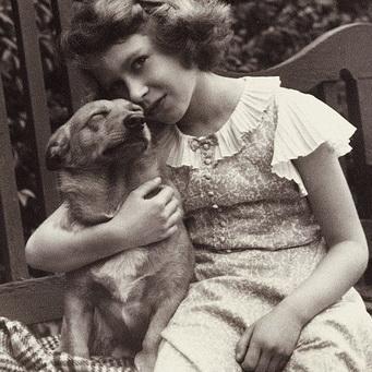 Собаки королевы Великобритании