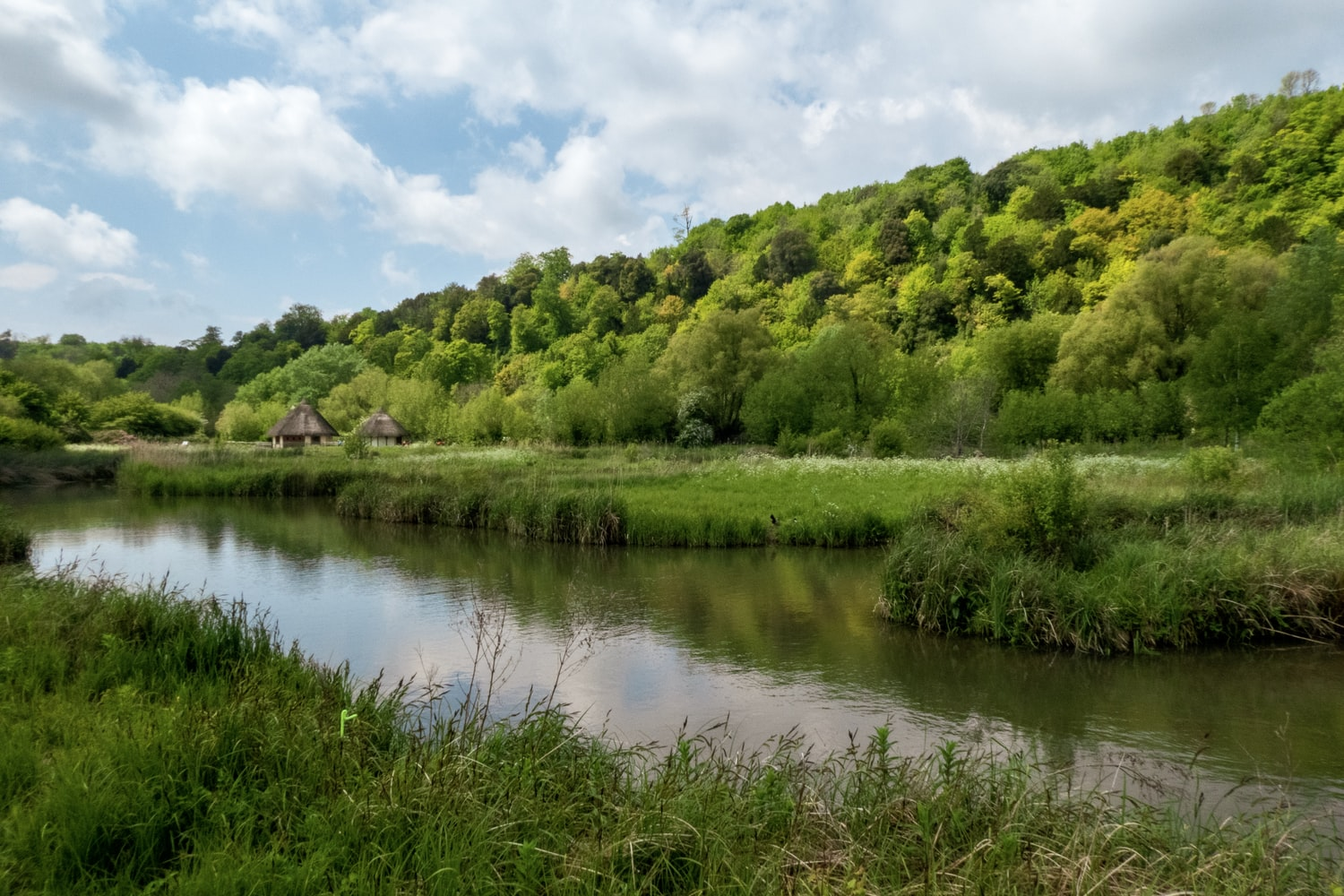 Wander through wetlands while camping in West Sussex (Nick Fewings/Unsplash)