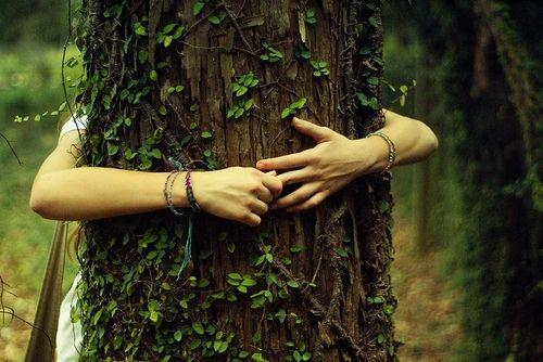 if everyone hugged more trees, the world would seriously be a ...
