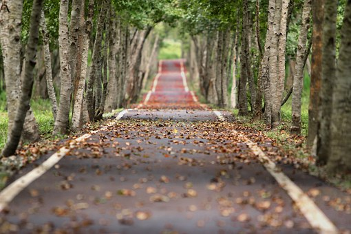 Road representing a virtuous cycle of migraine relief