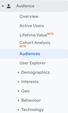 Google Analytics audience view