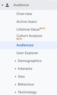 Google Analytics audience view