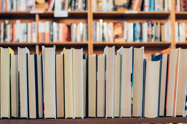 prateleira cheia de livros