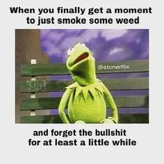 d6d39fde4daae737567da66e228ebe88--funny-weed-quotes-weed-memes.jpg