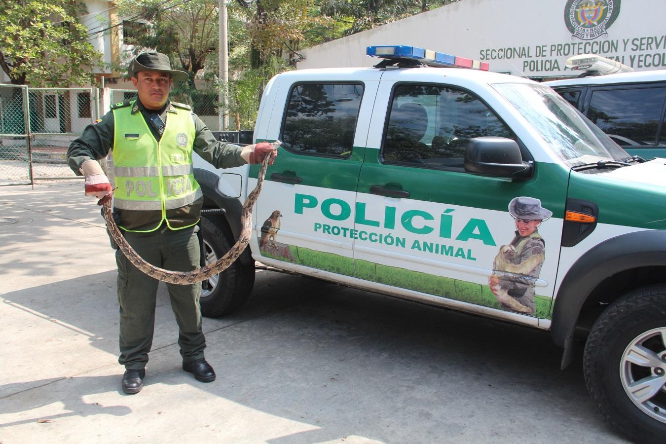 C:UsersFundación GuardeamDesktopPERI-ECOECO- BQTO N° 10 LOS RETOS AMBIENTALES DE LA NUEVA GOBERNADORAfoto 7 patrulla de proteccion ambiental.JPG