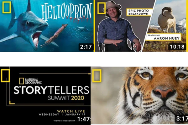 National Geographic Youtube Video Thumbnails for their Videos